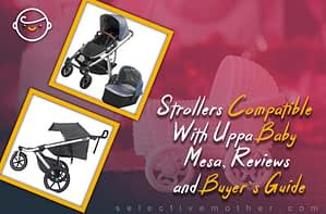 Strollers Compatible With Uppa Baby Mesa, Reviews and Buyer's Guide