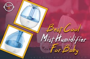 Best Cool Mist Humidifier For Baby